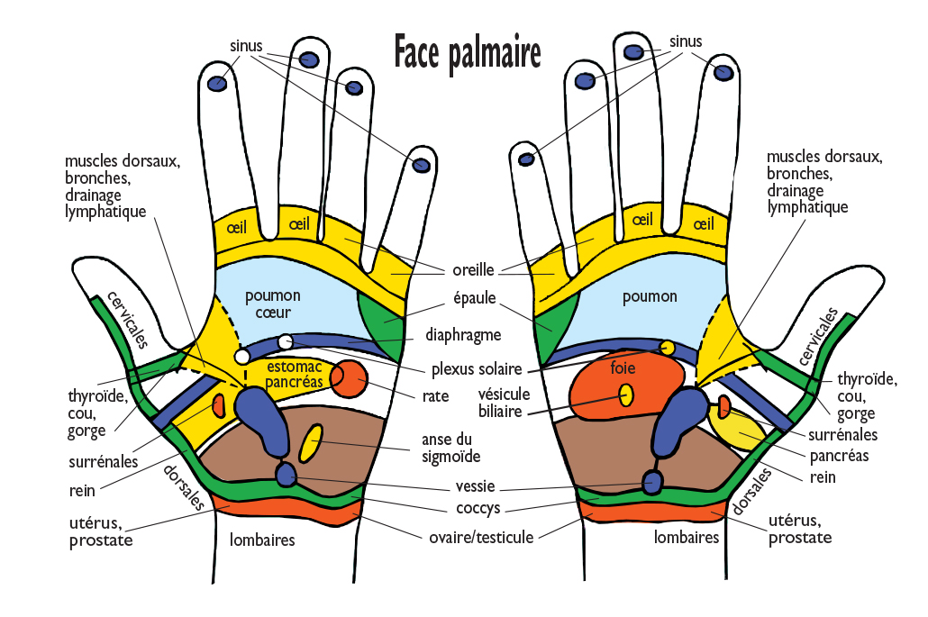 spa et réflexologie palmaire